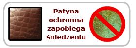 Patyna ochronna